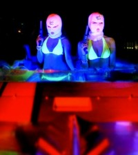 NP Editor's Blog: Spring Breakers, Despicable Me 2, Storm Surfers 3D, and Blackfish